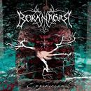 Borknagar - Empricism CD