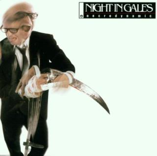 Night In Gales - Necrodynamic -  CD