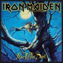 Iron Maiden - Fear Of The Dark -  Patch Aufnäher
