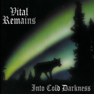 Vital Remains - Into Cold Darkness Vinyl