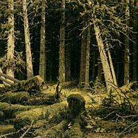 Klabautermann - Der Ort CD -